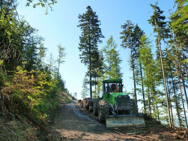 Dolní Morava - přibližování dřeva na úbočí vrchu Slamník