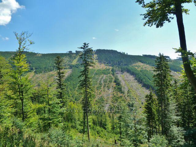 Dolní Morava - pohled z úbočí Slamníku na hřeben Chlumu