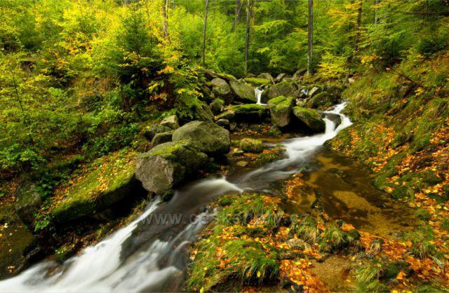 Podzim na Smědé