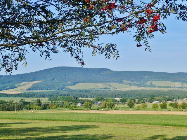 Dolní Orlice - pohled k hřebenu Suchého vrchu
