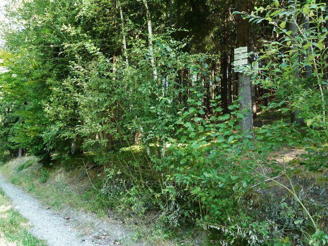 """Králíky - turistický rozcestník na trase po zelené TZ kolem Lískovce """"V Černém dole, 660 m.n.m."""""""