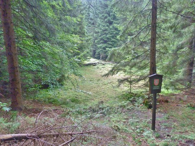 Jamné nad Orlicí - Přírodní rezervace Hynkovice