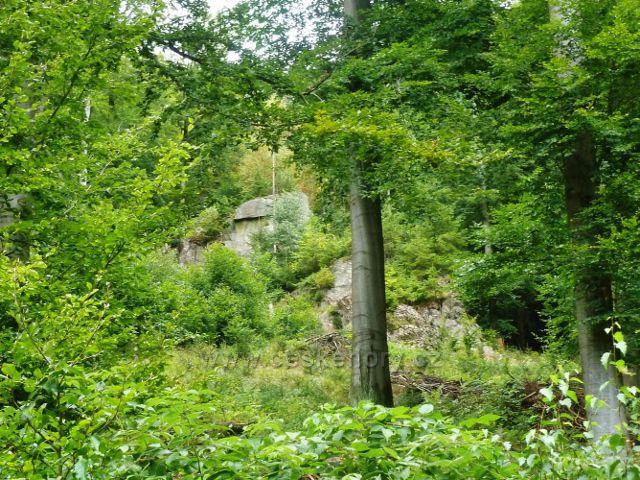 Jamné nad Orlicí - skalní výhoz nad cestou po modré TZ z Hynkovic do Kobylího dolu