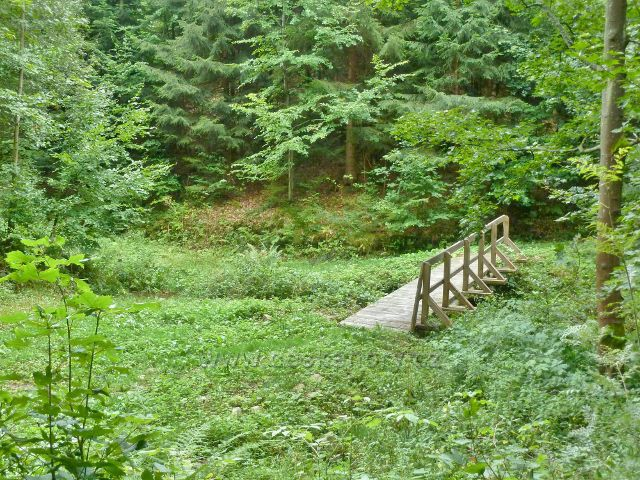 Jamné nad Orlicí - trasa po žluté TZ z Kobylího dolu vede po mostku přes Černovický potok