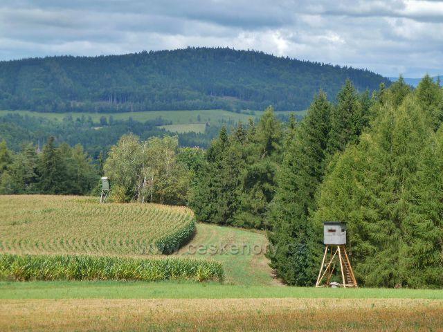 Jamné nad Orlicí - posedy u kukuřičného pole nad Rybárnou.Na obzoru je vrch Studený(721 m.n.m.)