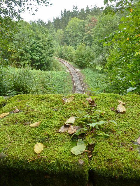 Rybná nad Zdobnicí - pohled z cesty nad železničním tunelem na trať do Rokytnice v Orlických horách