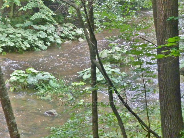 Vamberk - řeka Zdobnice mezi Pekelcem a Libštejnem