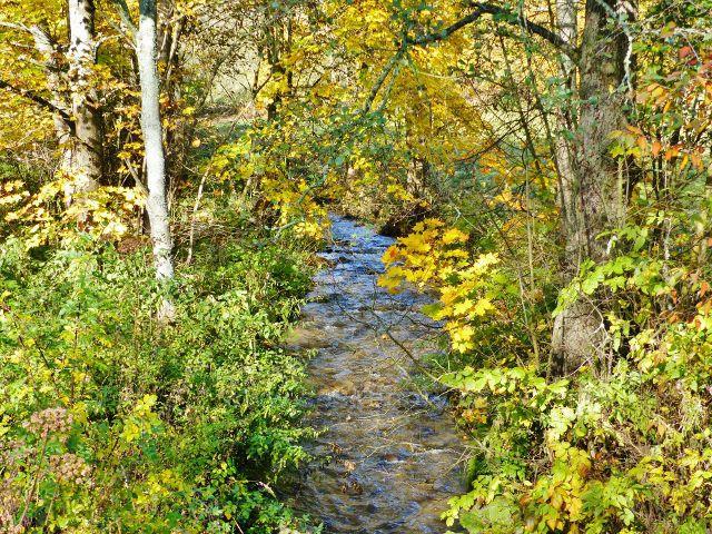 Chrastice - Chrastický potok v dolní části obce