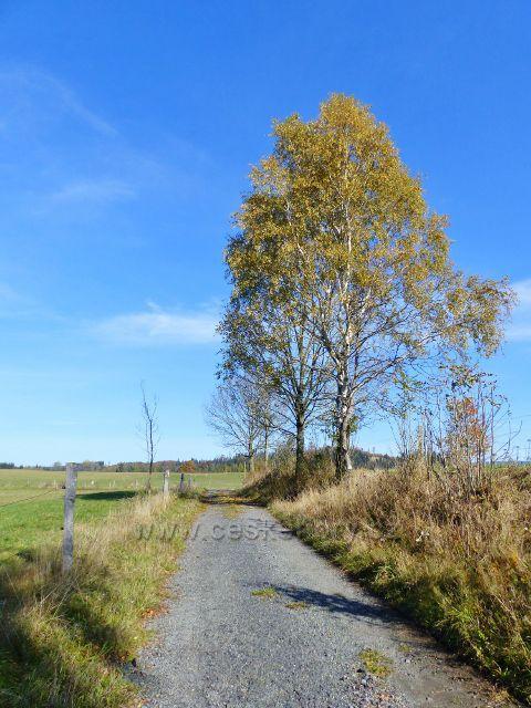 Chrastice - polní cesta pastvinami do Hynčic pod Sušinou
