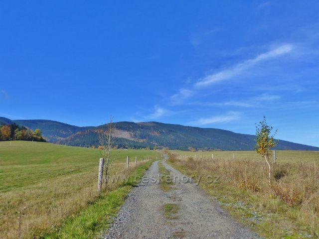 Chrastice - polníb cesta uprastřed pastvin do Hynčic