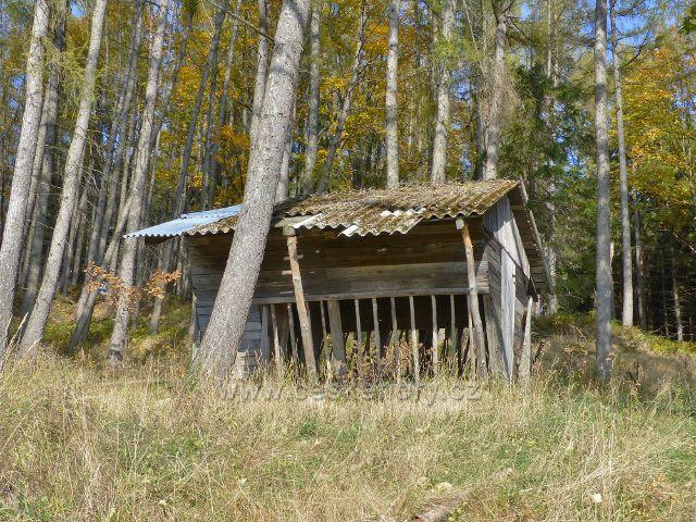 Hynčice pod Sušinou - krmelec na kraji lesa nad rybníkem Úžas u cesty do Starého Města pod Sněžníkem