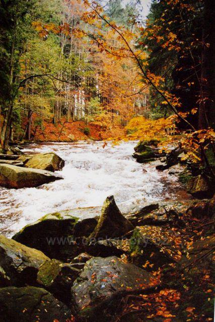 Podzim na Divoké Orlici