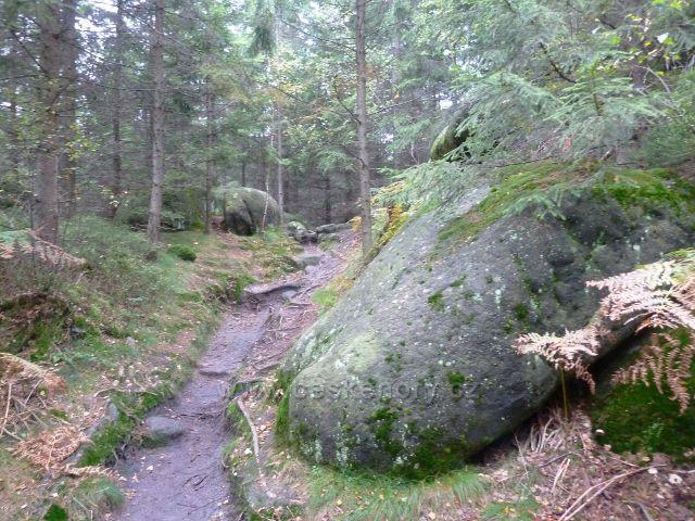 Polické stěny - cesta po zelené TZ k hornímu rozcestí Kovářovy rokle