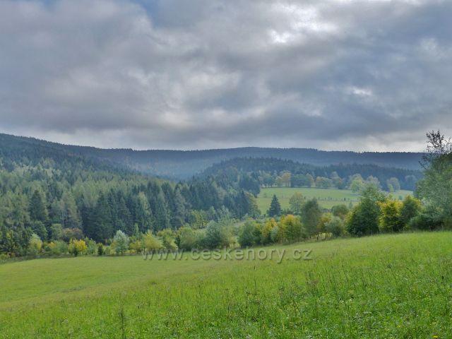 Nové Losiny - pastviny v Přemyslovském sedle