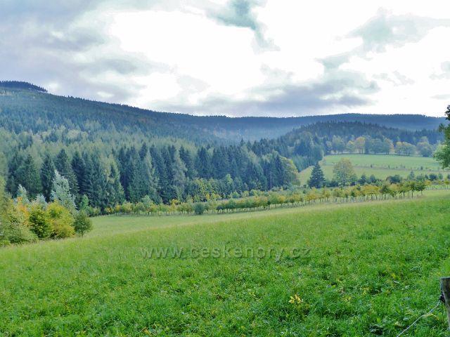 Nové Losiny - pastviny v Přemyslovském sedle, vlevo vrch Černá stráň