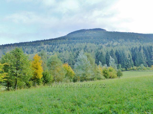 Nové Losiny - vrch Černá stráň, 1237 m.n.m.