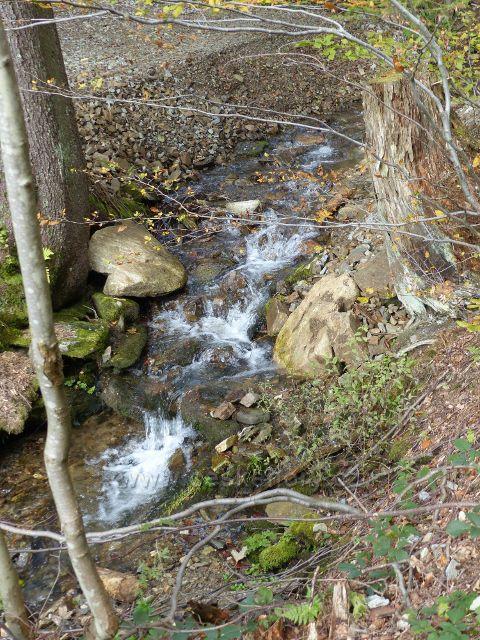 Loučná nad Desnou - Přemyslovský potok