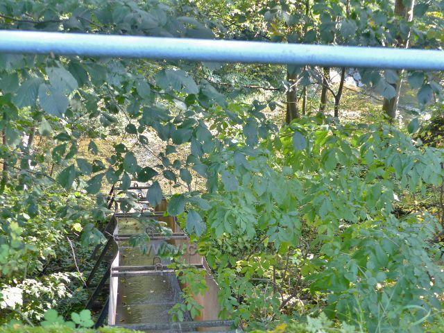 Loučná nad Desnou - plechové koryto Přemyslovského potoku ústí do Desné