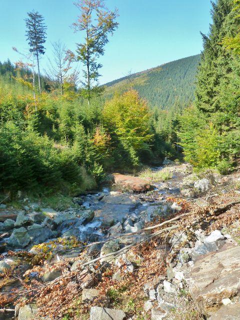 Údolí Jeleního potoku