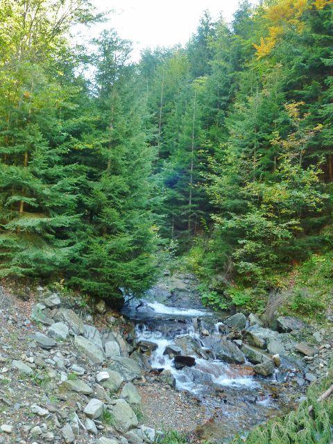 Jelení potok nad dolním poldrem