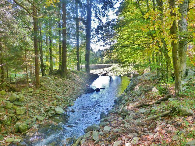 Klepáčský potok nad velkým poldrem