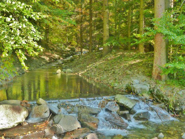 Klepáčský potok nad velkým poldremj