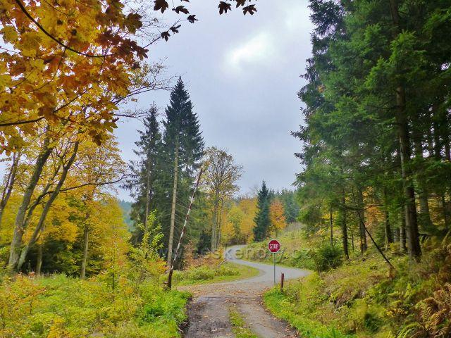 Vysoký Potok - rozcestí Pod Svatou Trojicí- vpravo vede silnička vzhůru k Severomoravské chatě, popřípadě ke Svaté Trojici, vlevo pak dolů do Vysokého Potoka