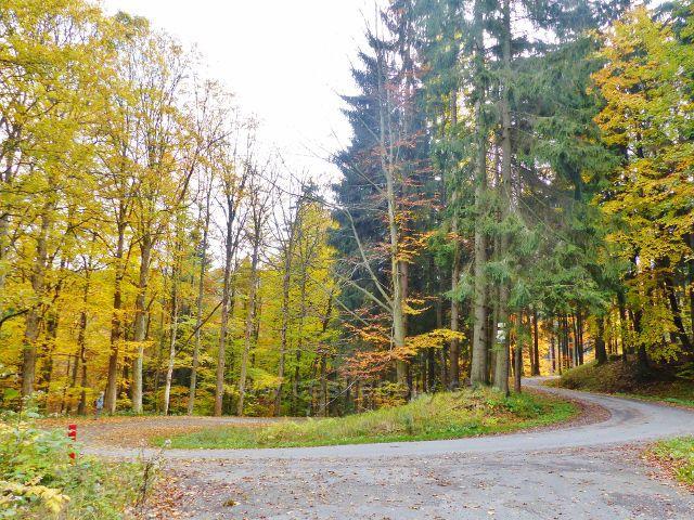 Vysoký Potok - rozcestí u Kalasovy lovecké chaty