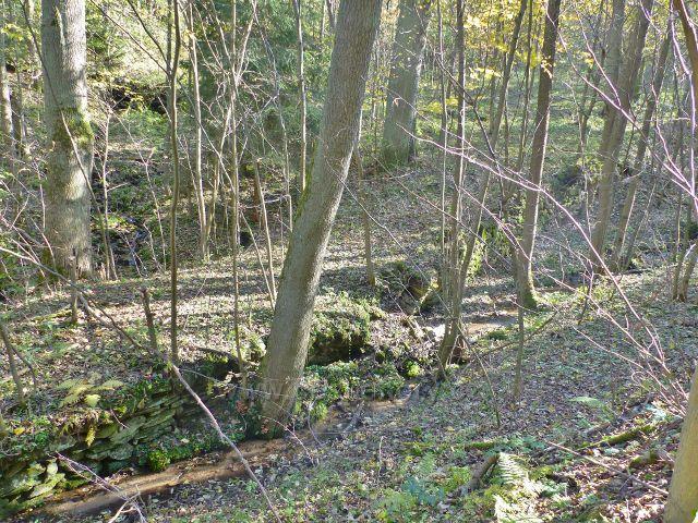 Vysoký Potok - stejnojmenný potok v horní části obce