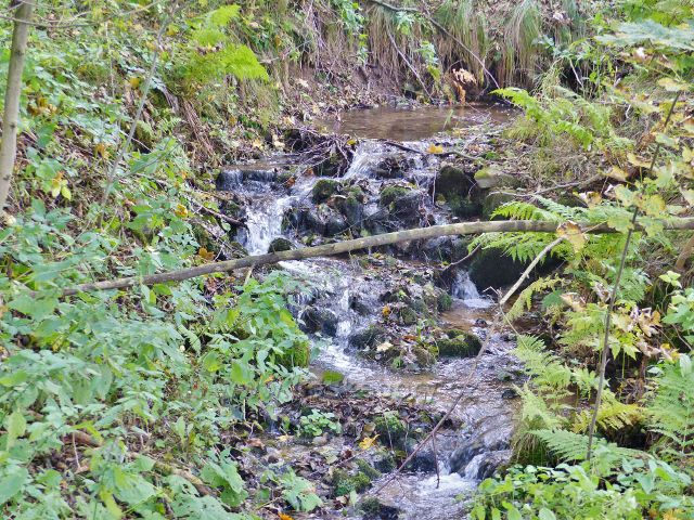Vysoký potok - stejnojmenný potok v obci