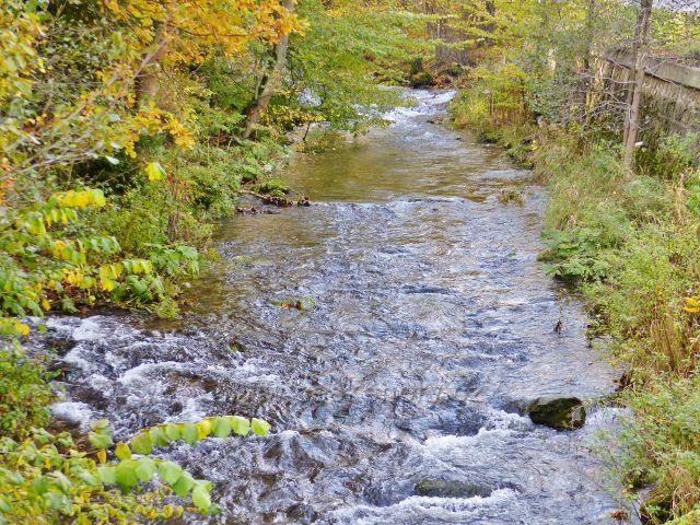 Malá Morava - ústí Vysokého Potoku do řeky Moravy (vlevo)