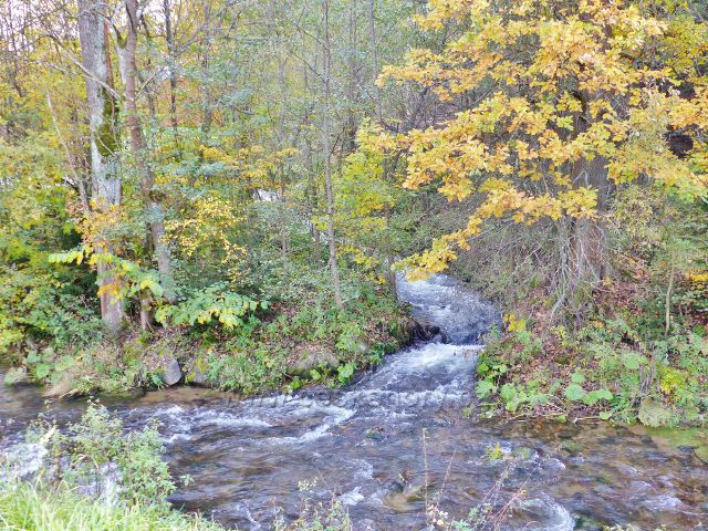 Malá Morava - poslední metry Vysokého Potoku a jeho ústí do řeky Moravy