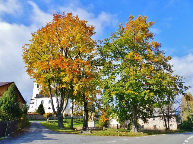 Malá Morava - rozcestí pod kostelem