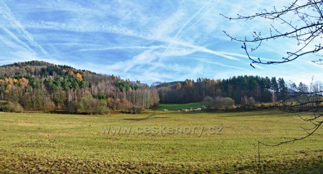 Pastviny kolem Křižan