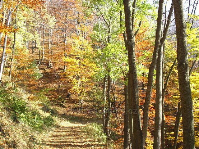 Podzim v Šumném dole