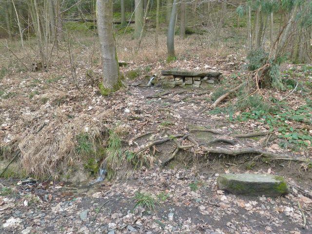 Les Včelný - původní Studánka nad níž stála kaplička,ze které zbyly už jen rozvaliny