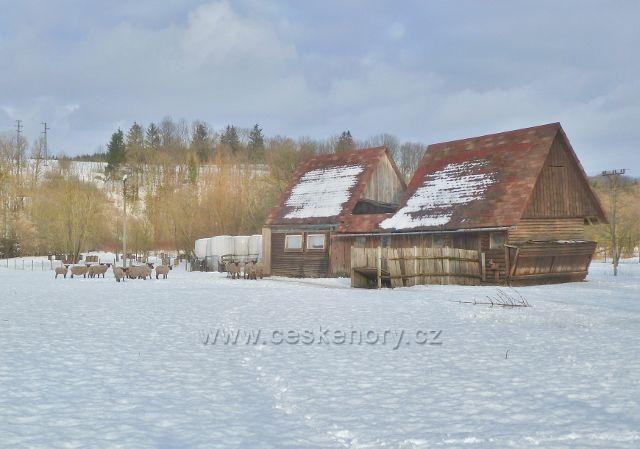 Žamberk - ovčín pod Černým lesem