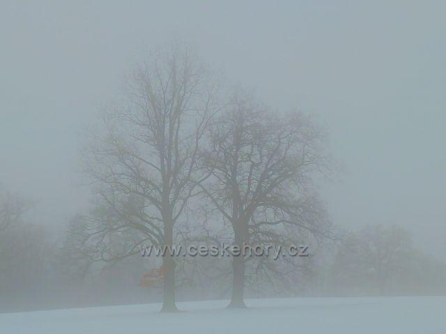 Žamberk - mlha v zámeckém parku