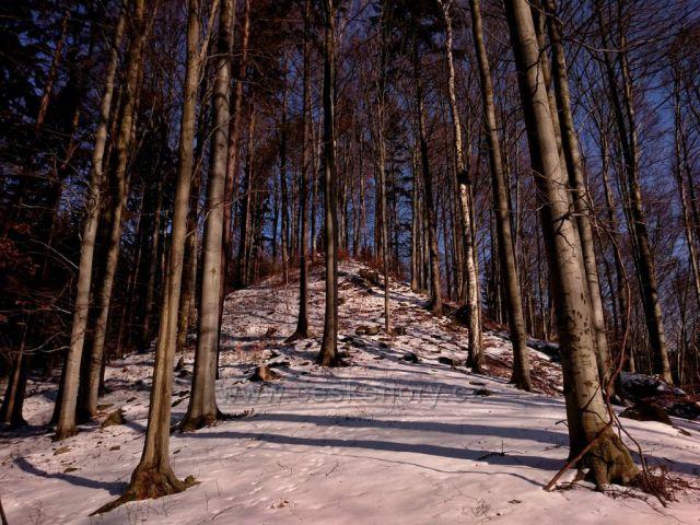 Přírodní památka Poláchovy stráně - Výří skály