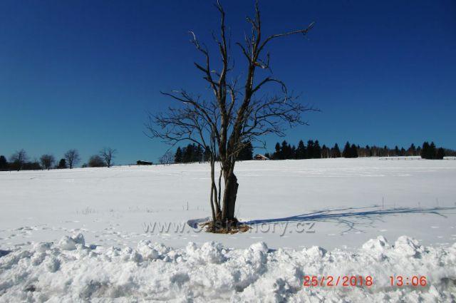 Krásná zima-Hřebečná