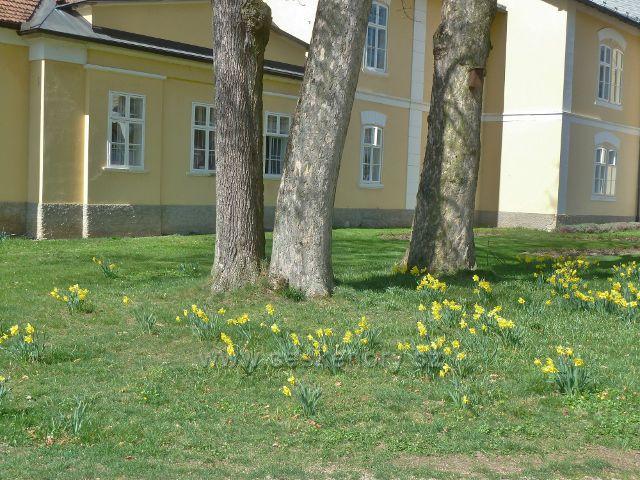 Kostelec nad Orlicí - zámecký park