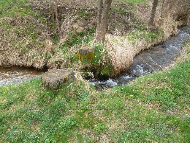 Dolní Orlice - část horního toku Tiché Orlice