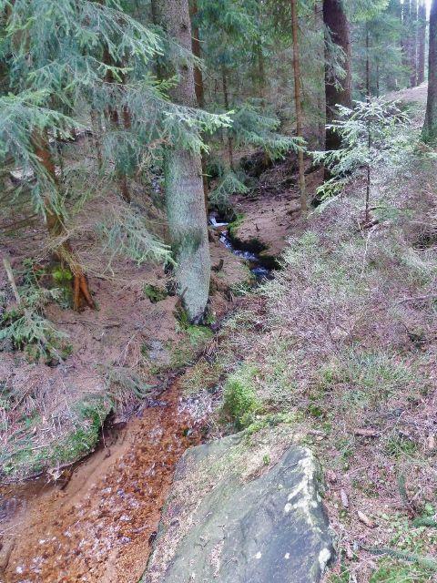 Horní Orlice - Tichá Orlice několik stovek metrů pod svým pramenem
