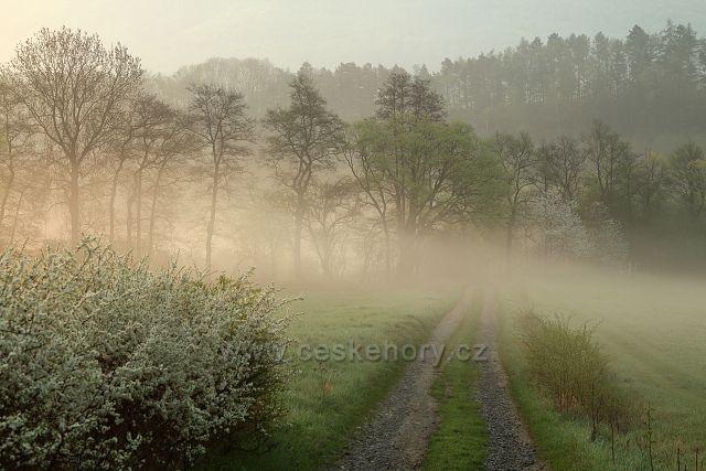 Ranní mlha u Černýše