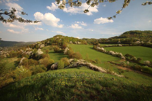 Výhled z Pastviště u Okounova
