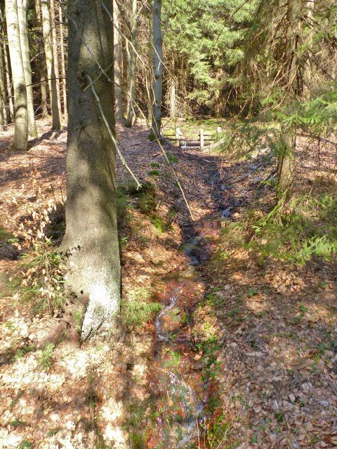Hrazený lesní potůček na úbočí Jeřábu