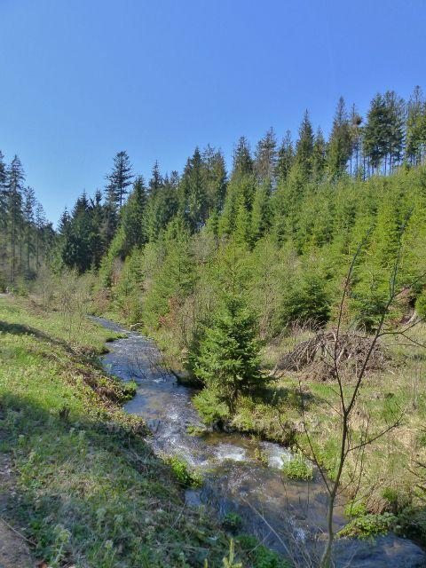 Horní tok říčky Březná před Moravským Karlovem