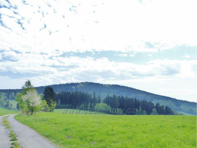 Pohled z Hřebínku na vrchol Čečola (839 m.n.m.)
