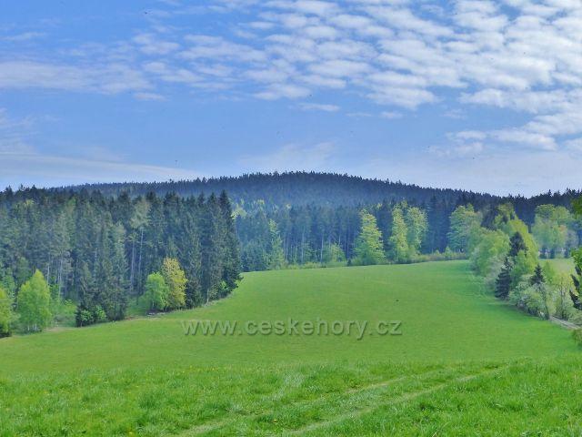Pastviny na severním úbočí Hřebínku