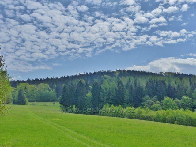 Písařov - pastviny na úbočí Čečoly